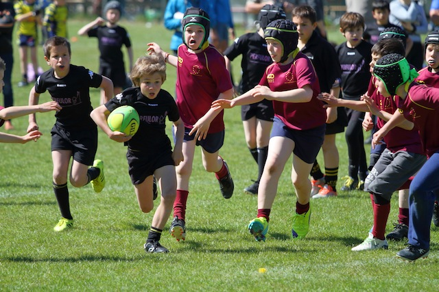 Rugby_0008